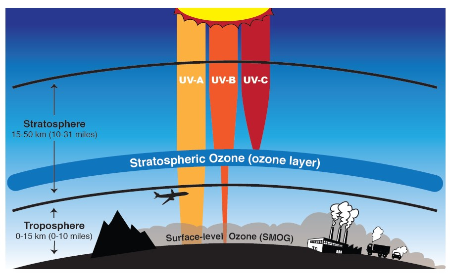 a chart showing that stratospheric ozone blocks UV-C and most UV-B, but that in the troposphere surface level ozone contributes to smog