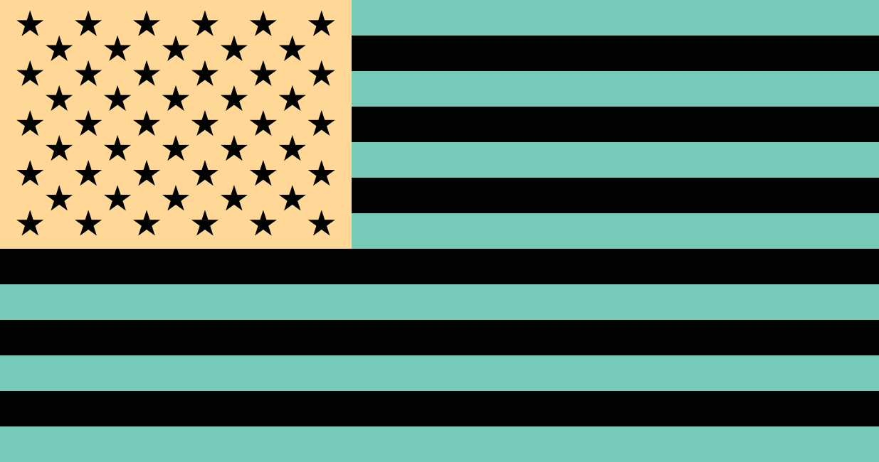 U.S. Flag with Inverted Color