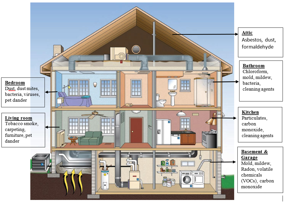 Sources of indoor air pollution. Bedroom: dust, dust mites, bacteria, viruses, pet dander. Living room: tobacco smoke, carpeting, furniture, pet dander. Attic: asbestos, dust, formaldehyde. Bathroom: chloroform, mold, mildew, bacteria, cleaning agents. Kitchen: particulates, carbon, monoxide, cleaning agents. Basement and Garage: mold, mildew, radon, volatile chemicals (VOCs), carbon monoxide