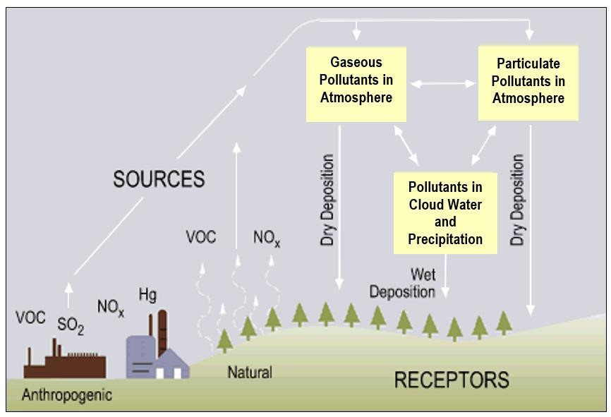 Flow chart showing dry and wet deposition processes