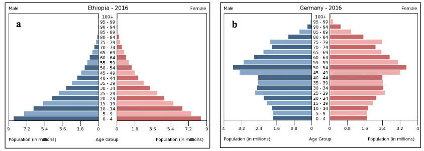 Charts of a) Ethiopia's 2016 population pyramid displays largest populations at the youngest age groups and a steady decline in population size for each older age groupl. b) Germany's 2016 population pyramid bulges in the middle.