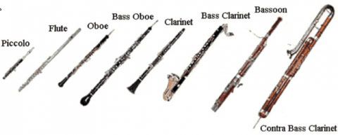 woodwind instruments. a piccolo, a flute, an oboe, a bass oboe, a clarinet, a bass clarinet, a bassoon, and a contra bass clarinet