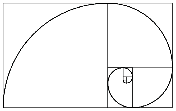 Fibonacci Spiral: The Golden Ratio