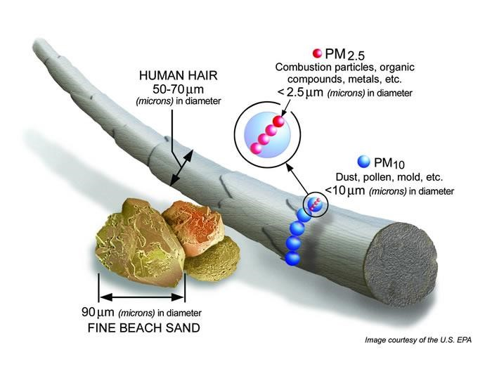 Graphic showing size comparison of particulate material (PM10 and PM2.5) compared to fine beach sand and human hair.