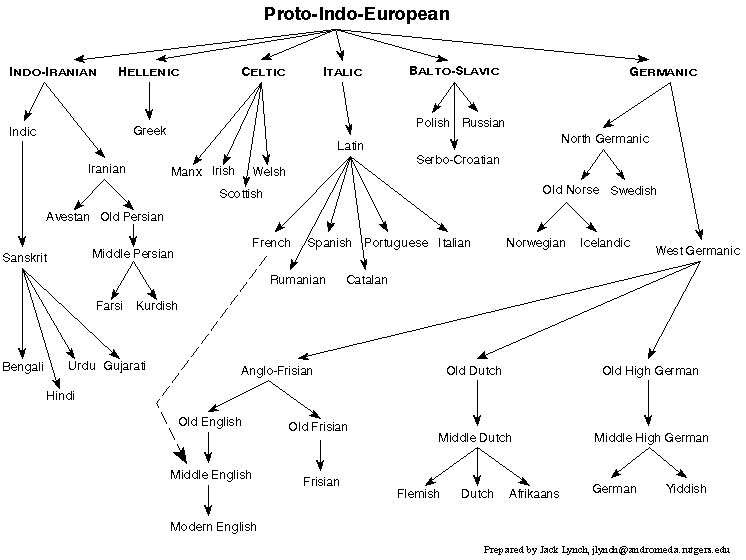 Chart showing the relationship between some languages in the Indo-European Family
