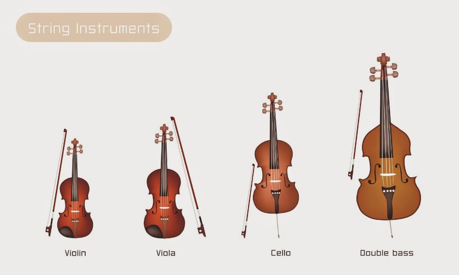 string instruments. a violin, a viola, a cello, and a double bass